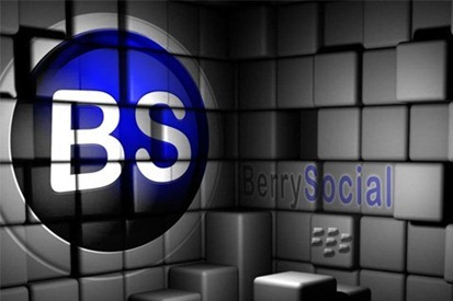 berrysoc_bricks_480x320.jpg